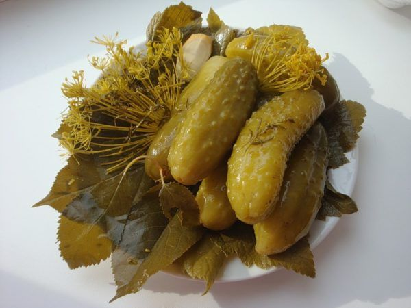 Бабусині рецепти квашених огірків
