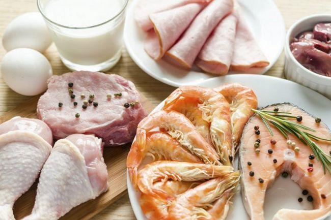 Білкова дієта - докладний опис. Варіанти дієти. Продукти, меню, результати, відгуки