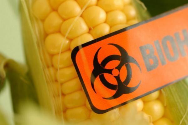 Чорний список продуктів ГМО