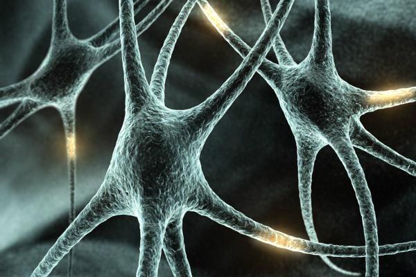 Демієлінізуючі захворювання нервової системи