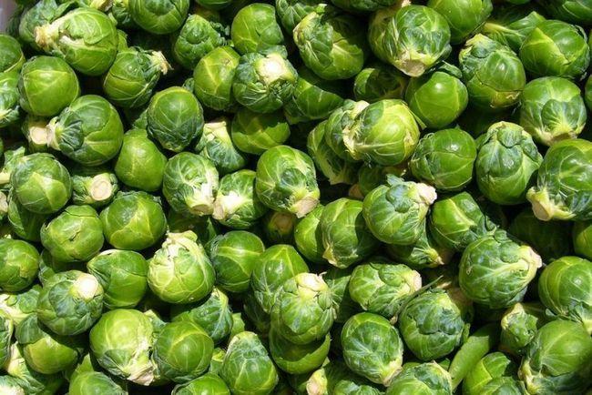 Дієта на брюссельській капусті