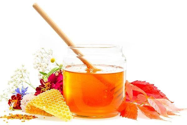 Гречаний мед і його унікальні можливості
