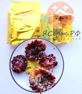 Хризантема корисні властивості