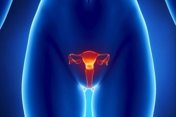 Ерозія шийки матки у родили
