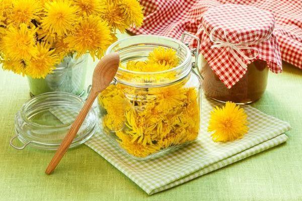 Рецепти приготування меду з кульбаб в домашніх умовах
