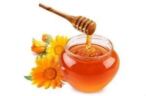 Лісовий мед корисні властивості