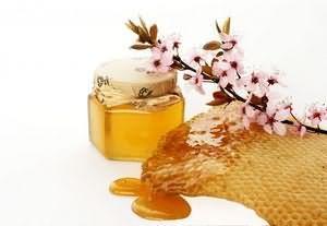 Липовий мед корисні властивості