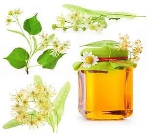 Мед корисні властивості