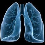Очищення легенів