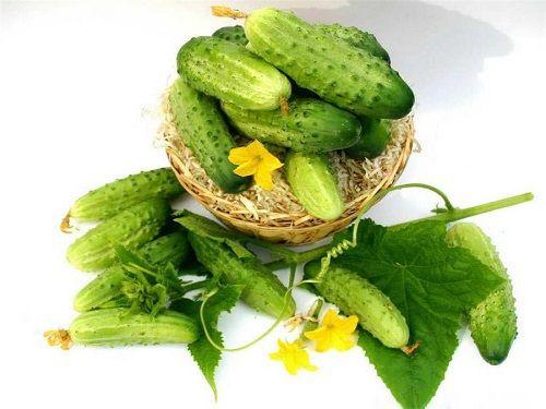 Огіркова дієта - відгуки