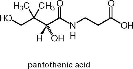 Взаємодія вітаміну В5 з іншими речовинами