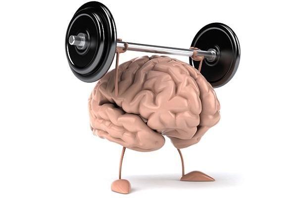 Їжа для розуму або як поліпшити роботу мозку?