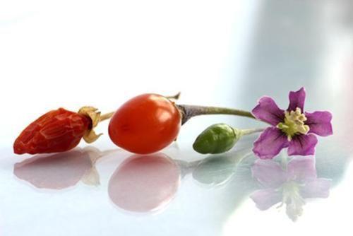 Чому годжі називають ягодами щастя?