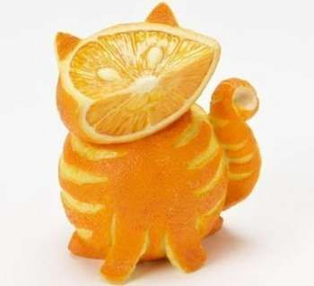 Кіт з апельсина