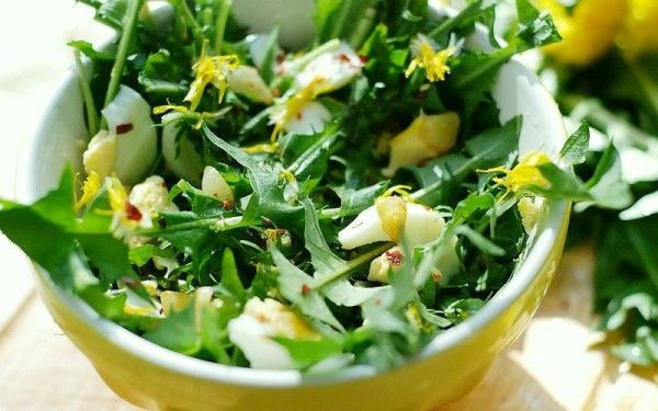 Салат кульбаба: колекція корисних рецептів з фото