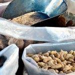 Найкорисніші бобові, злакові та горіхи
