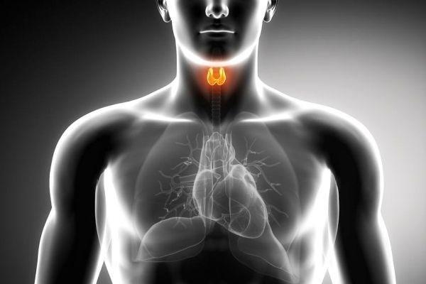 Тиреотоксикоз щитовидної залози