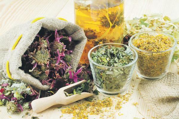 Трави для очищення організму