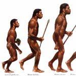 Вчені розповіли про дієту первісних людей