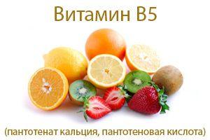 Вітамін b5 пантотенова кислота