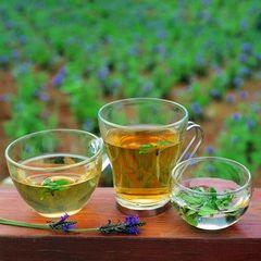 Вибираємо чай для схуднення